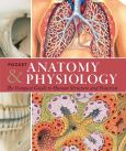 Pocket Anatomy & Physiology: Compact Guide To Human Structure & Function